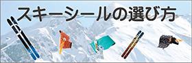 スキーシールの選び方